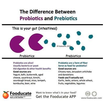 Probiotics versus Prebiotics